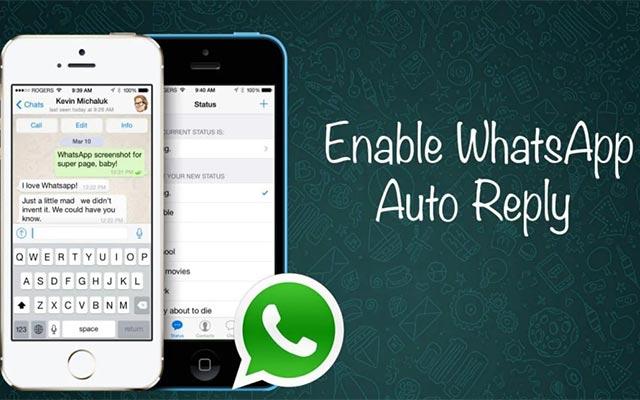 Cara Membuat Aplikasi Excel To WhatsApp Web
