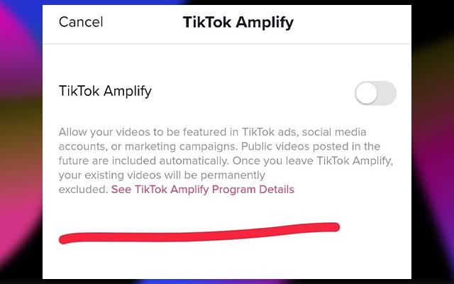 Terakhir tingga aktifkan saja TikTok Amplify