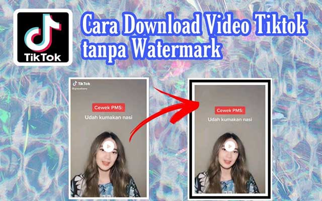 Cara Download Video TikTok Tanpa Watermark Online