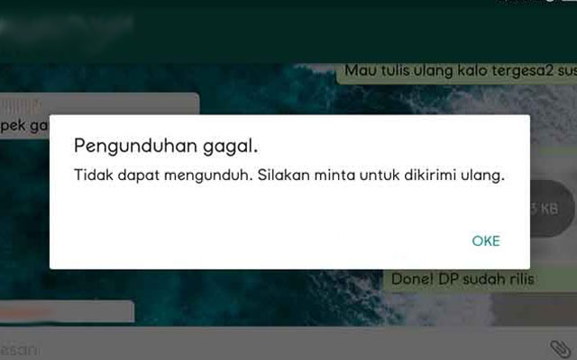 Penyebab WhatsApp Tidak Bisa Mengunduh Gambar